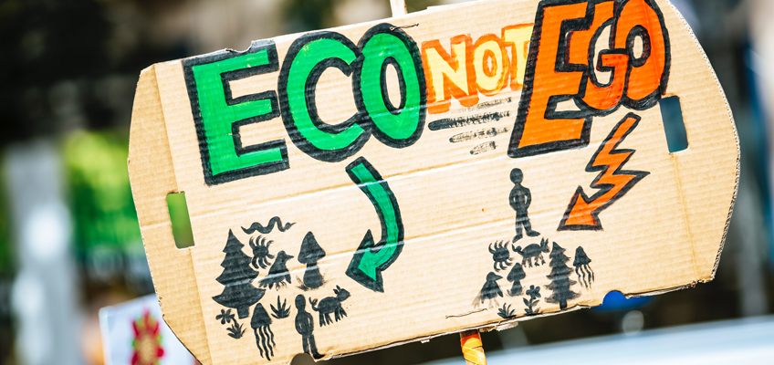 Demonstrationsschild Eco not Ego